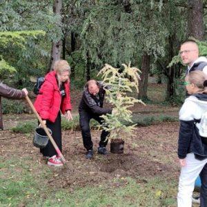 Старозагорка засади 50 дървета в Аязмото за юбилея си